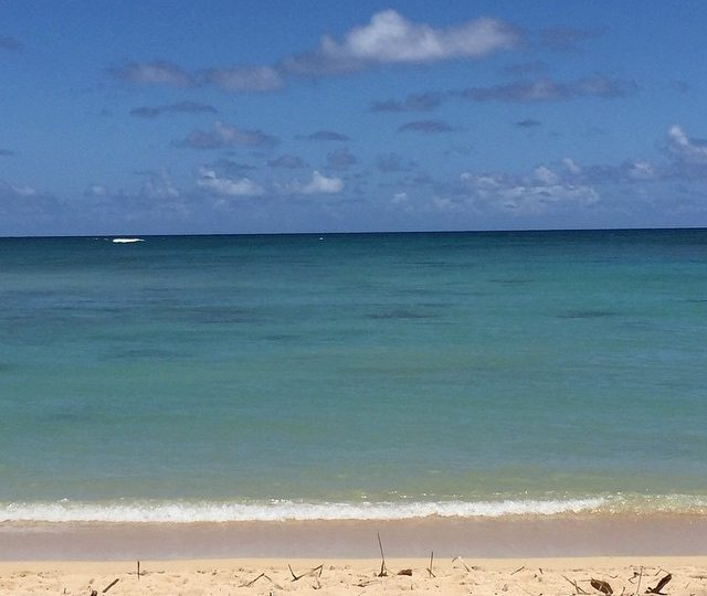 If only every day could look like this outside my window #northshore #calm #inspiration #aloha